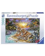 Ravensburger Tigers At Sunset 2000p Palapeli
