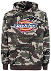 Dickies Nevada, huppari