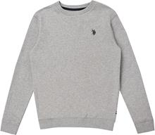 US Polo Assn. Core Crew Paita, Vintage Grey Heather 7-8 Vuotta