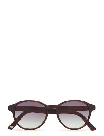 Web Eyewear We0130 Ruskea