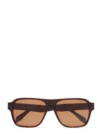 Alexander McQueen Eyewear Am0036s Ruskea