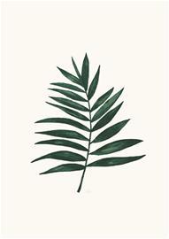 Petite Déco Juliste 21x30, Palm Leaf