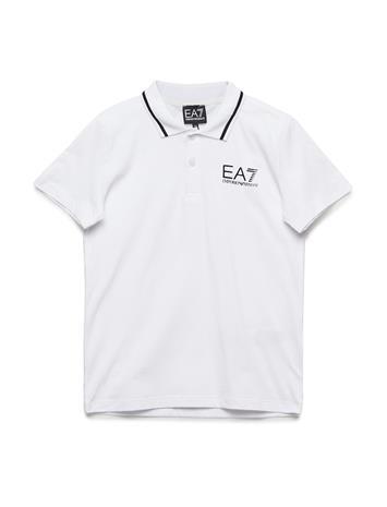 EA7 Polo Valkoinen