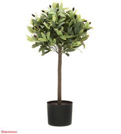 4Living 72cm oliivipuu silkkikukka