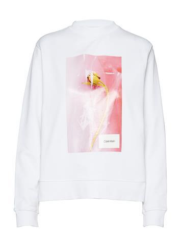 Calvin Klein Graphic Flower Sweatshirt Valkoinen