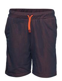 Unauthorized Lewis Shorts Sininen