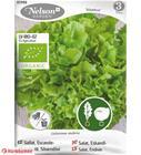Nelson Organic Nuance endiivi salaatti siemen