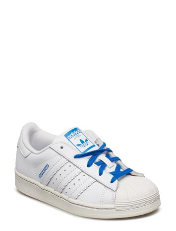 adidas Originals Superstar C Sininen
