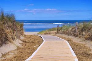 Fototapet Langeoog Dunes