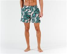 Rip Curl Volley Paradise Swimshorts