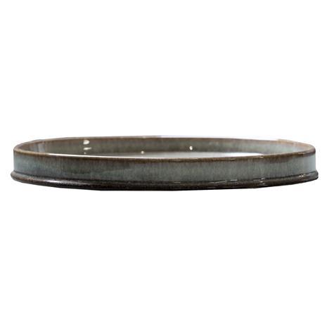 DBKD Astillbe Plate, Multi