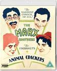 Cocoanuts / Animal Crackers (Blu-ray), elokuva