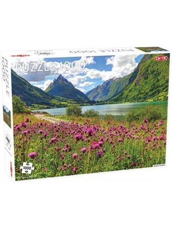 Tactic 'Bergsheimsvatnet' puzzle 1000 pcs (multi)