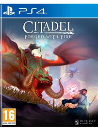 Citadel: Forged with Fire, PS4 -peli