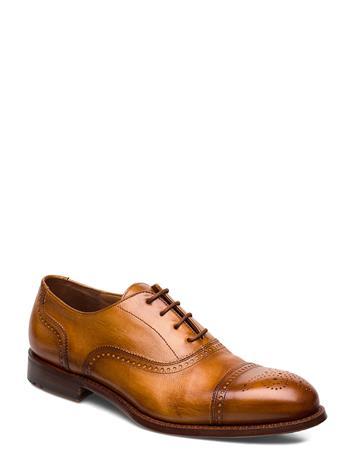 Lloyd Orell Shoes Business Laced Shoes Ruskea Lloyd 3 - CUOIO