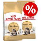 Royal Canin Breed kissanruoka 2 x 2/4 kg erikoishintaan: -20% alennusta! - Maine Coon Adult (2 x 4 kg)