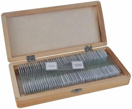 Bresser prepared slides 50 pcs box