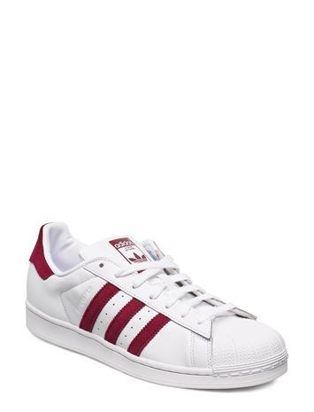 adidas Originals Superstar Matalavartiset Sneakerit Tennarit Valkoinen Adidas Originals FTWWHT/CBURGU/FTWWHT