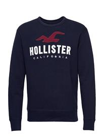 Hollister Tech Logo Crew Svetari Collegepaita Sininen Hollister NAVY SD/TEXTURE