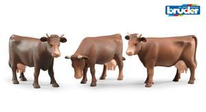 Bruder-lehmä