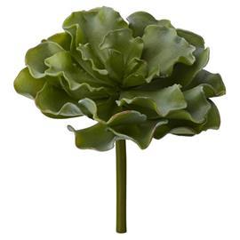 Lene Bjerre Flora succulent H19 cm