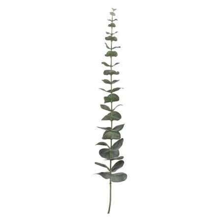 Lene Bjerre Flora eucalyptus H64 cm