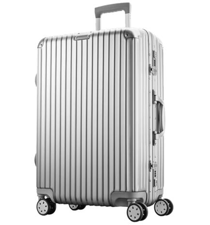 """Swiss Mobility QUICK PRO 24"""" SILVER"""