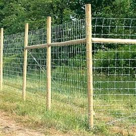 Eläinverkko 1,2 m x 50 m