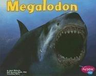 Megalodon (Janet Riehecky), kirja