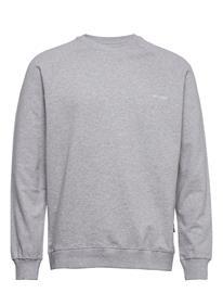 DEDICATED Sweatshirt Malmoe Dedicated Logo Svetari Collegepaita Harmaa DEDICATED GREY MELANGE