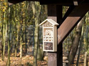 Hyödyllisten hyönteisten Hotelli Flora *****, Muut lelut