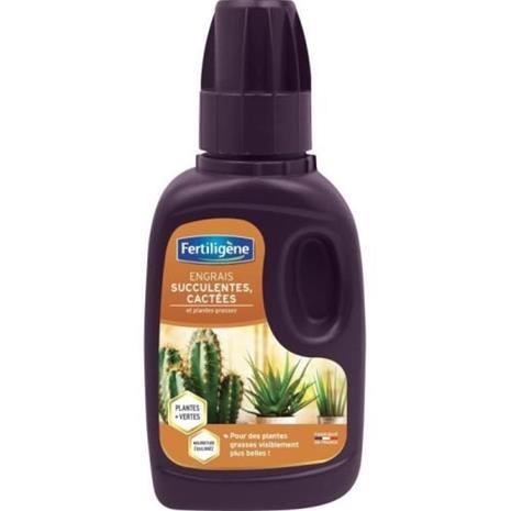 LANNOISET kaktus- ja mehevät lannoitteet - 250 ml