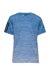adidas Performance Yb Tr Grad Tee T-shirts Short-sleeved Sininen Adidas Performance BLUE/WHITE