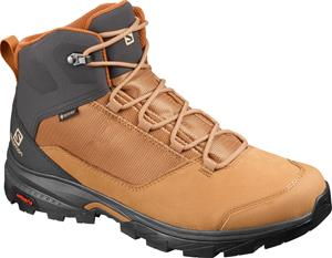 Salomon OUTward GTX Shoes Men, tobacco brown/phantom/caramel cafe