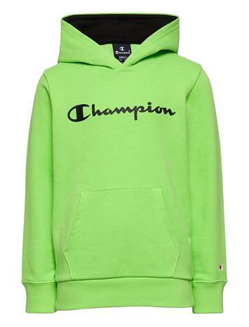 Champion Hooded Sweatshirt Huppari Vihreä Champion GREEN GECKO FLUO