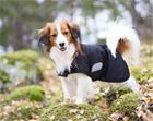 Back on Track Hugo koiran verkkotakki