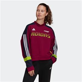 adidas Colorblock Sweatshirt