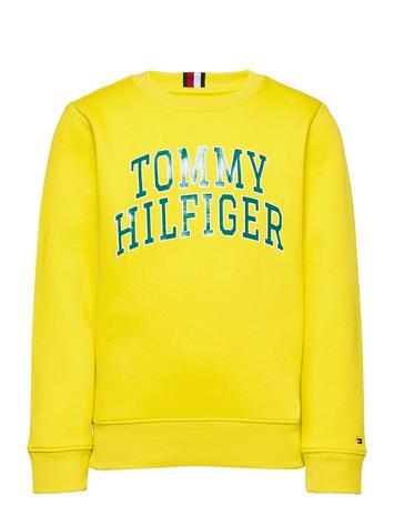 Tommy Hilfiger Hilfiger Artwork Swe Svetari Collegepaita Keltainen Tommy Hilfiger VALLEY YELLOW
