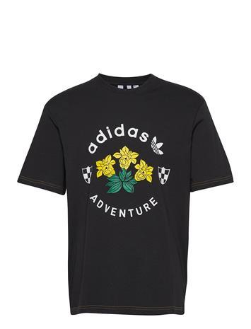 adidas Originals Adv Graphic Tee T-shirts Short-sleeved Musta Adidas Originals BLACK