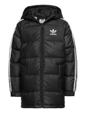 adidas Originals Down Jacket Toppatakki Musta Adidas Originals BLACK/WHITE
