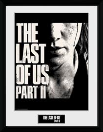 The Last Of Us - 2 - Face - Kehystetty kuva - Unisex - multicolor