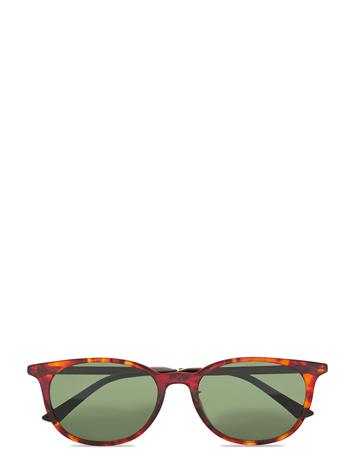 Gucci Sunglasses Gg0830sk Aurinkolasit Ruskea Gucci Sunglasses HAVANA-GOLD-GREEN