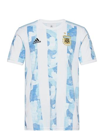 adidas Performance Afa H Jsy D T-shirts Football Shirts Sininen Adidas Performance WHITE/CLBLUE