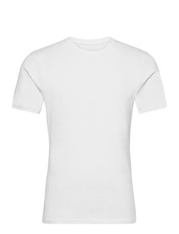 Tiger of Sweden Heimdall T-shirts Short-sleeved Valkoinen Tiger Of Sweden PURE WHITE
