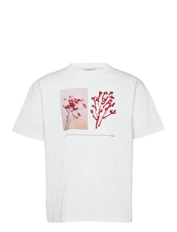 HOLZWEILER Fleur Tee T-shirts Short-sleeved Valkoinen HOLZWEILER BURGUNDY FLOWER PRINT