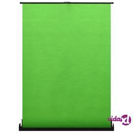 """vidaXL vihreä 72"""" 4:3, Valokuvaustausta"""