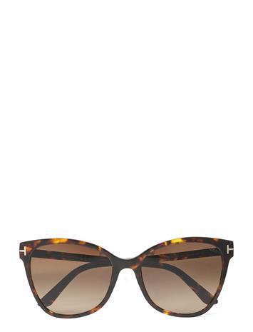 Tom Ford Sunglasses Ani Aurinkolasit Ruskea Tom Ford Sunglasses DARK HAVANA