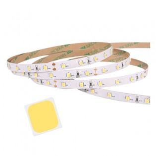 LED-valonauha 2m WW/NW/CW 60kpl/m IP20 - Lämmin valo WW