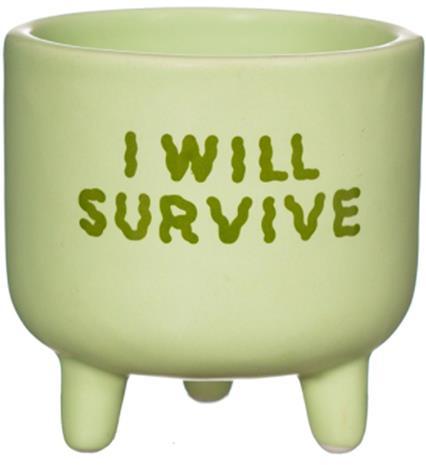 Sass & Belle Kukkaruukku Mini I will survive