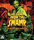 He Came from the Swamp: The William Grefé Collection - Limited Edition (Blu-ray), elokuva